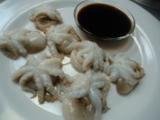 Октопод бебе сашими